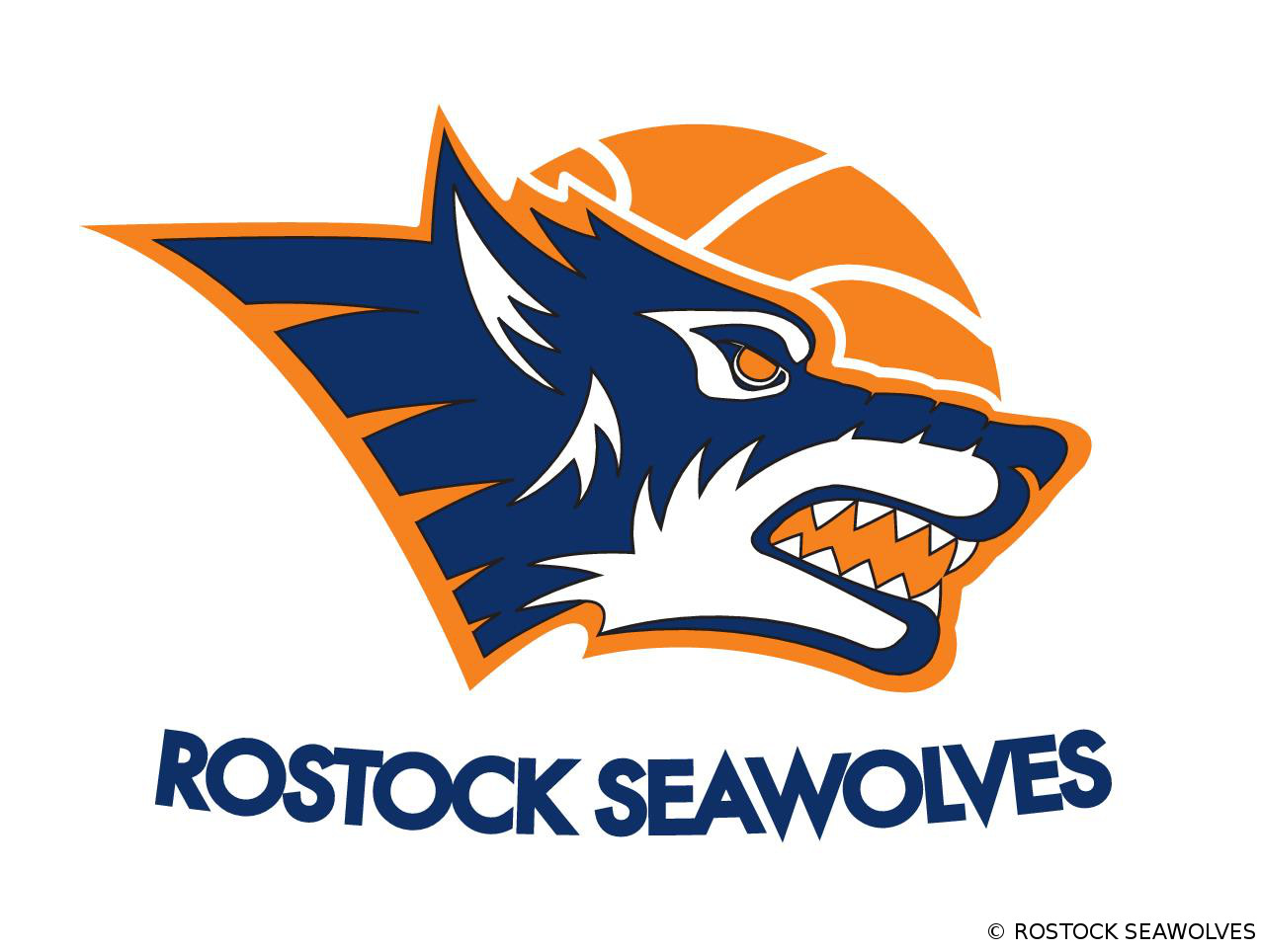 Fan-Tag der ROSTOCK SEAWOLVES