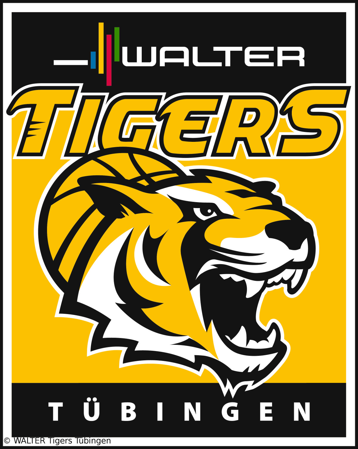 WALTER Tigers verpflichten hungrigen Shooting Guard