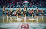 Brose Bamberg Dancers suchen neue Mitglieder!