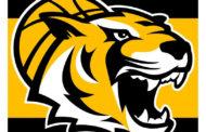 Unterstützung für die Tigers Tübingen gesucht