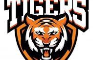 Neuverpflichtung bei den Aschersleben Tigers